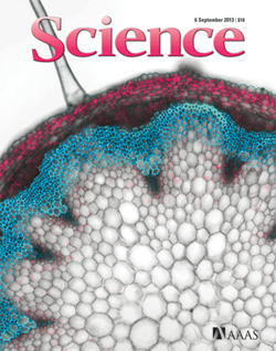Science Journal Cover image