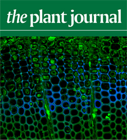 The Plant Journal Cover image